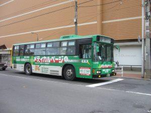 p1070195